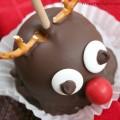 rudolph reindeer gourmet apple